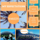 my-expectations3
